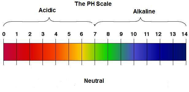 [عکس: PH-Scale.jpg]